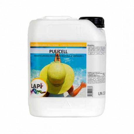 Pulicell Detergente per Pulizia di Celle di Centraline al Sale